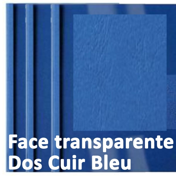 Face transparente#Dos Cuir Bleu